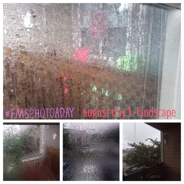 1. Landscape #fmsphotoaday #littlemomentsapp cannot see much of the landscape here today with all of this rain!