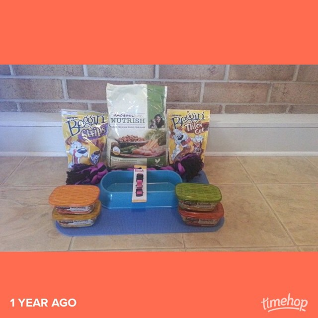 these are the goodies i went and bought when we were waiting to be able to bring marley home! #timehop